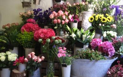 projektowanie kwiaciarni
