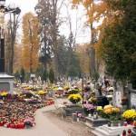Opieka nad grobami - pomysł na biznes